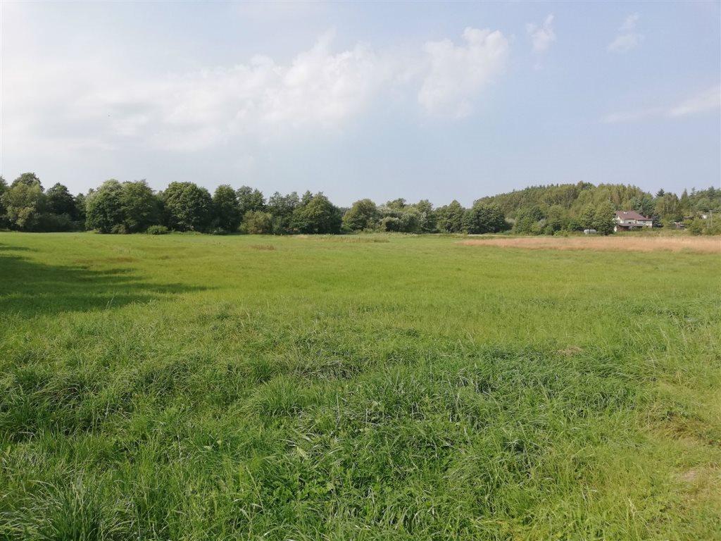 Działka rolna na sprzedaż Luzino, Zgody  12593m2 Foto 3