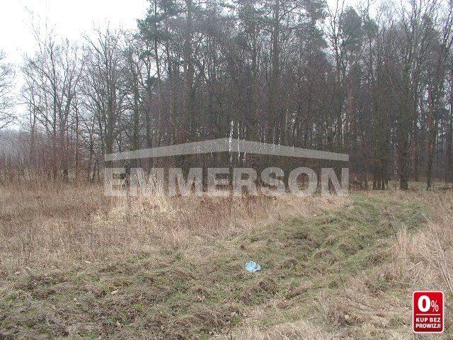Działka rolna na sprzedaż Miękinia, Zabór Wielki, Zachodnia  17273m2 Foto 3