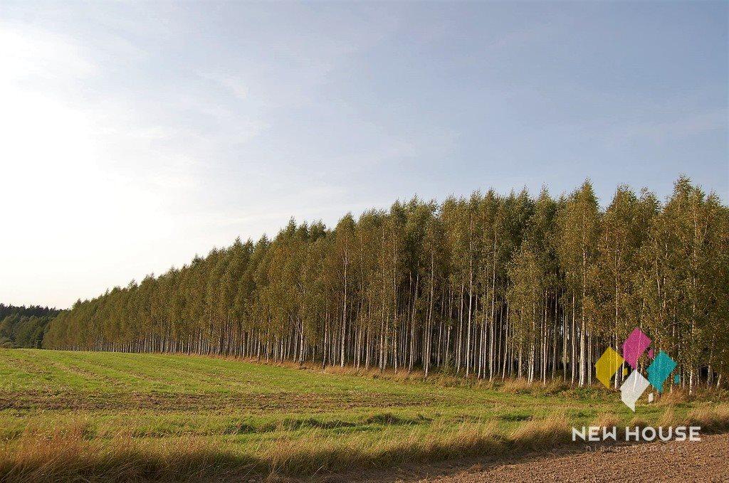 Działka leśna na sprzedaż Barcikowo  41800m2 Foto 3