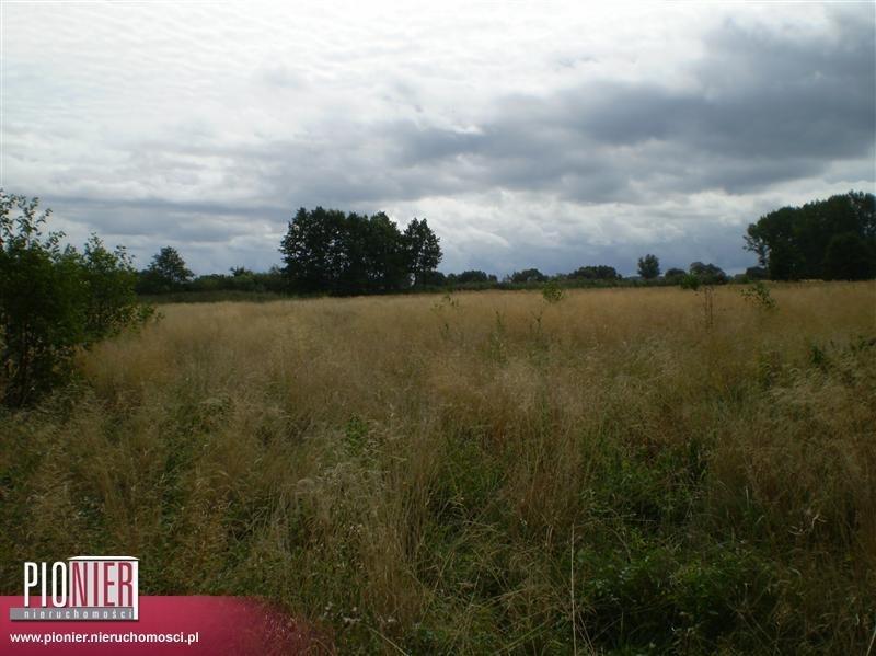 Działka rolna na sprzedaż Stepnica  10868m2 Foto 1
