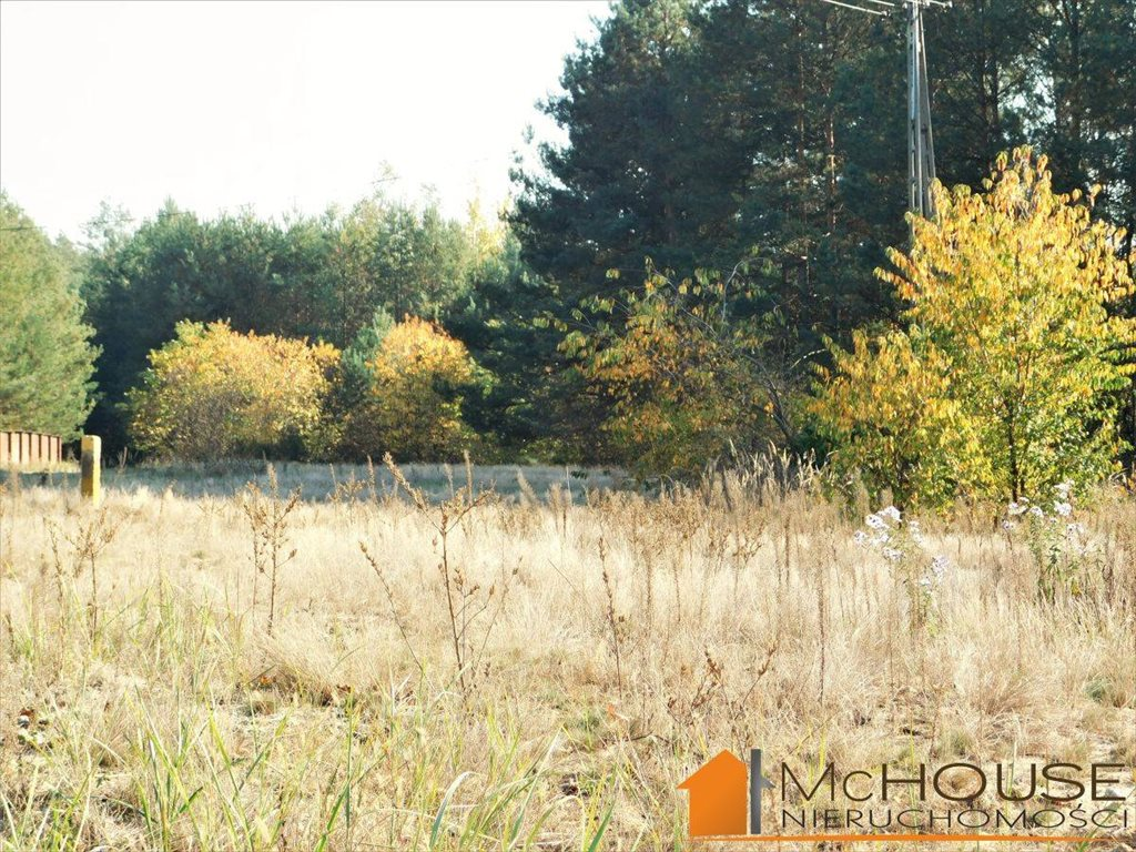 Działka rolna na sprzedaż Huta Komorowska, Huta Komorowska  5350m2 Foto 8