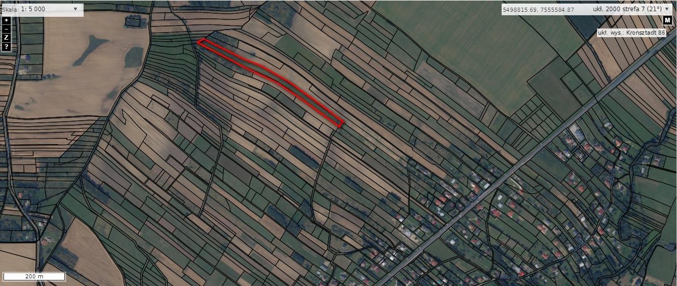 Działka rolna na sprzedaż Rogi  12000m2 Foto 6