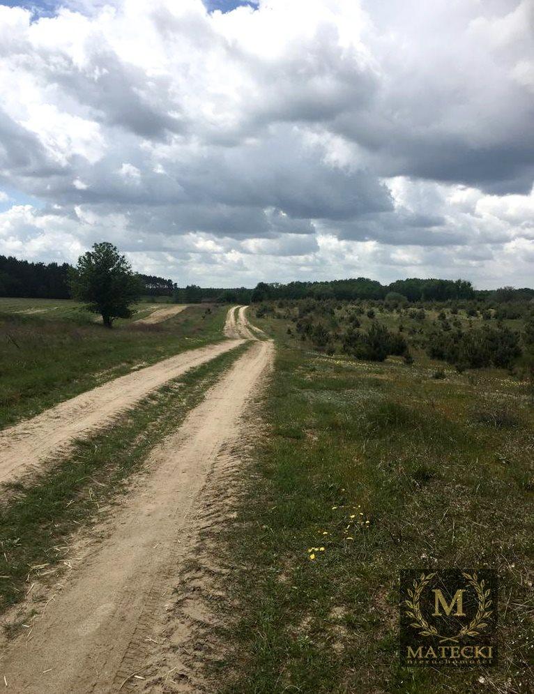 Działka siedliskowa na sprzedaż Karczewko, Jodłowa  3031m2 Foto 9