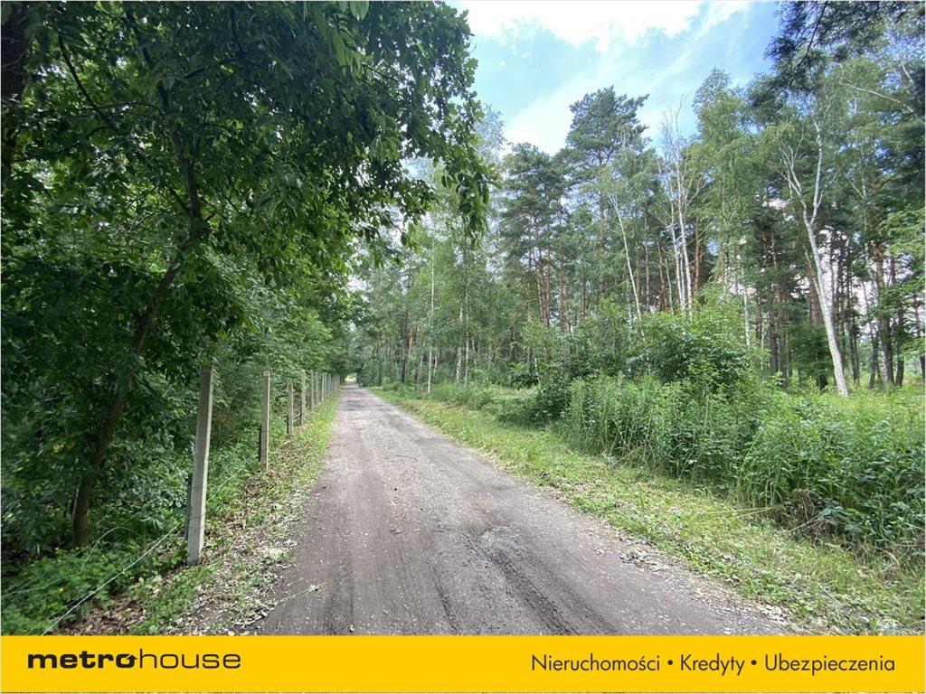 Działka leśna na sprzedaż Władysławów, Lesznowola  3128m2 Foto 11