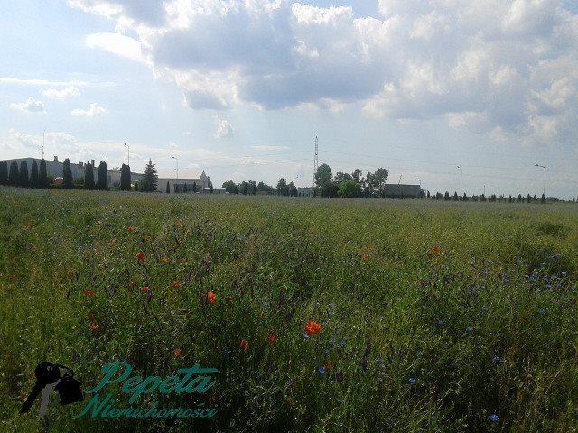 Działka przemysłowo-handlowa na sprzedaż Swarzędz, Zalasewo  22300m2 Foto 8