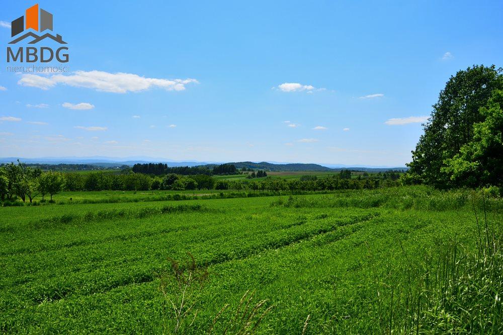 Działka rolna na sprzedaż Czułów  16800m2 Foto 1