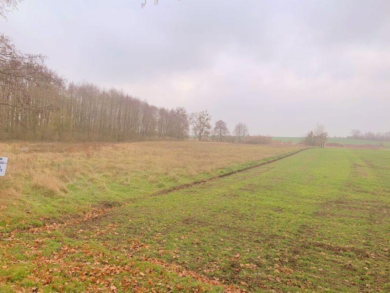 Działka leśna na sprzedaż Pyrzyce, WOJCIECHA BARTOSZA GŁOWACKIEGO  15700m2 Foto 4