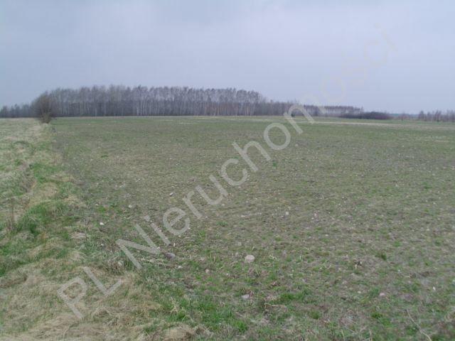 Działka rolna na sprzedaż Mszczonów  13500m2 Foto 2