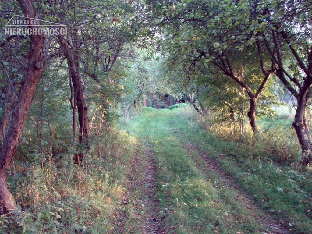 Działka rolna na sprzedaż Liksajny, Liksajny  8657m2 Foto 11