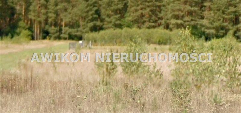 Działka inna na sprzedaż Skierniewice, Borowiny  13996m2 Foto 1