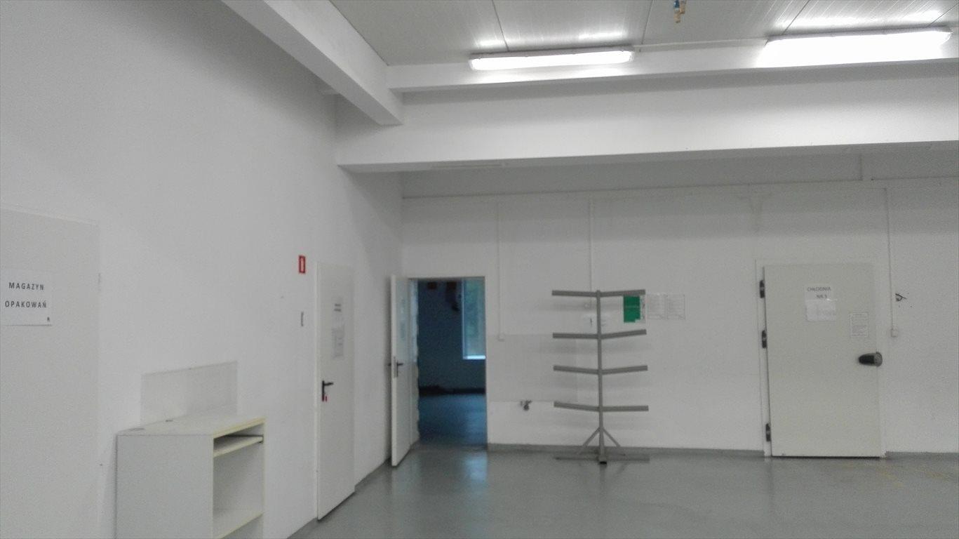 Lokal użytkowy na sprzedaż Rogoźno, Garbatka, 14B  550m2 Foto 1