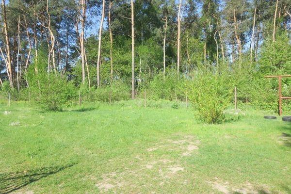 Lokal użytkowy na sprzedaż Wola Gutowska, Jedlińsk  200m2 Foto 5