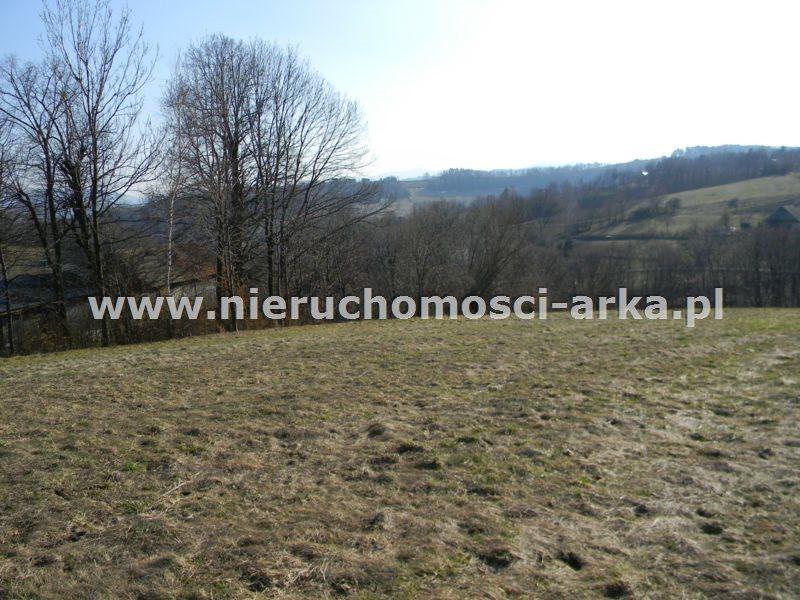 Działka rolna na sprzedaż Makowica  10300m2 Foto 1