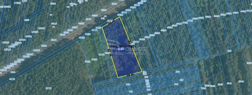Działka leśna na sprzedaż Kuźnica  2900m2 Foto 2