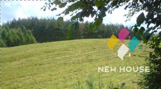 Działka rolna na sprzedaż Pupki  3233m2 Foto 1