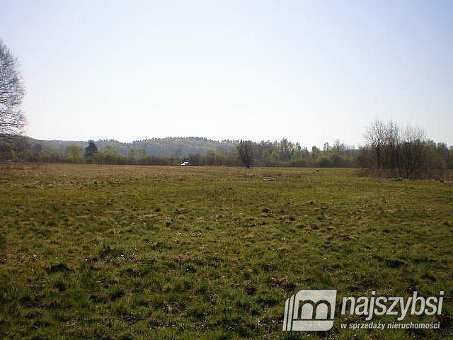 Działka rolna na sprzedaż Szczecin, Skolwin  10581m2 Foto 1
