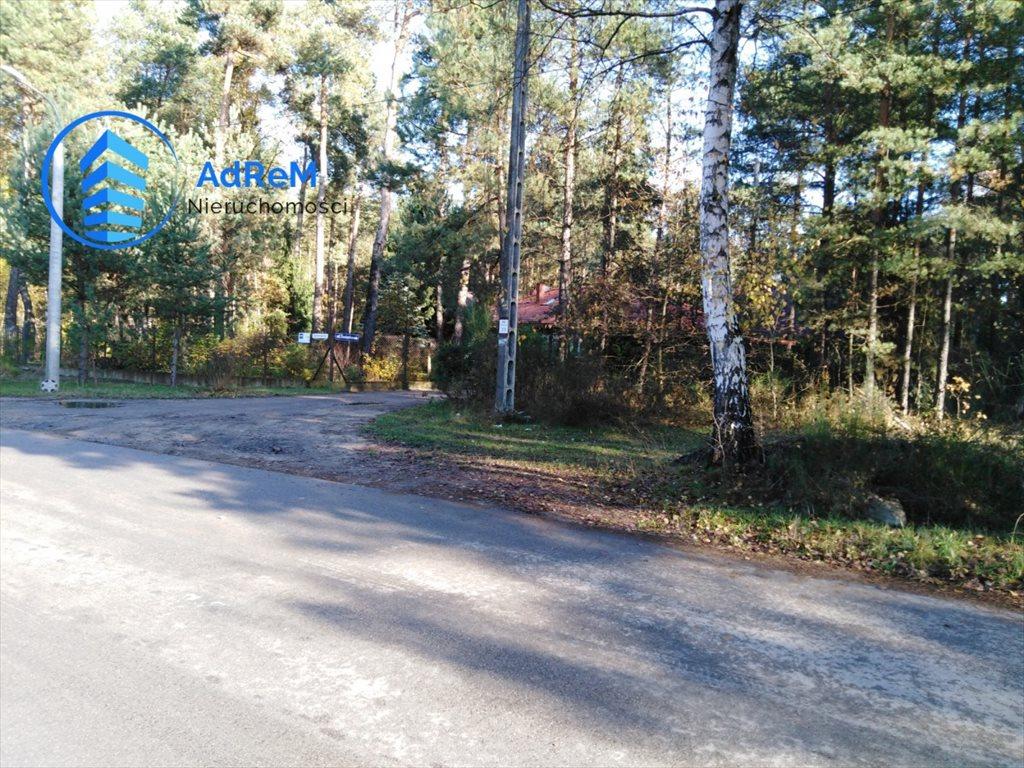 Działka leśna na sprzedaż Jeziórko, Świerkowa  1000m2 Foto 4