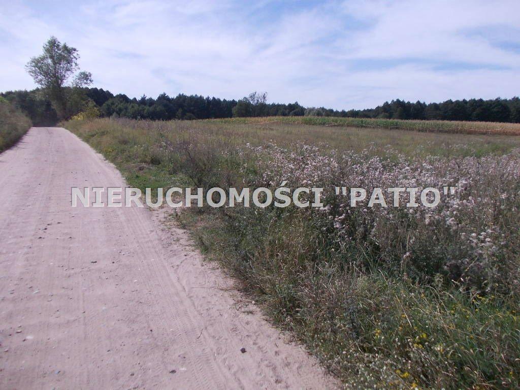 Działka inna na sprzedaż Zbierkowo, Zbierkowo  6000m2 Foto 6
