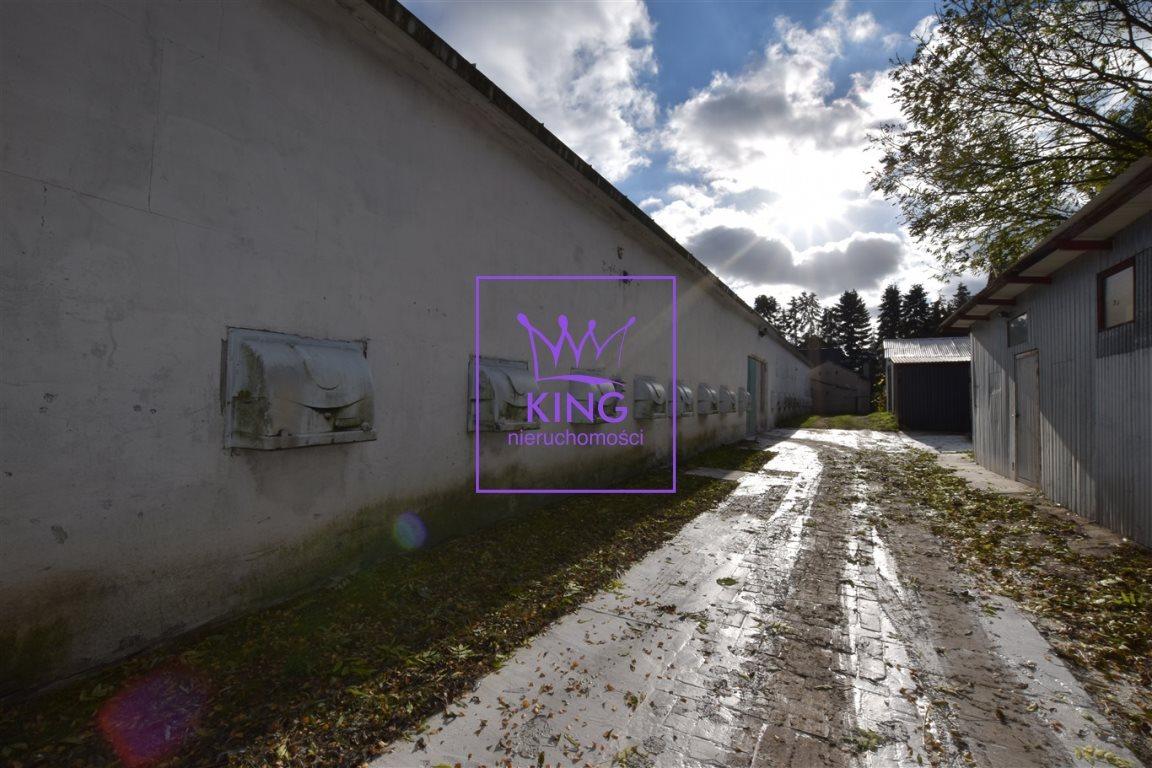 Dom na sprzedaż Motaniec  420m2 Foto 6