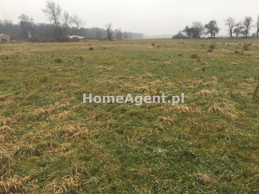 Działka rolna na sprzedaż Mikołów, Paniowy, ok. Rybołówka  3260m2 Foto 4