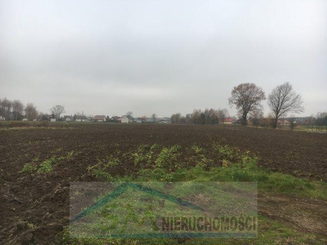 Działka inna na sprzedaż Stasi Las  850m2 Foto 3
