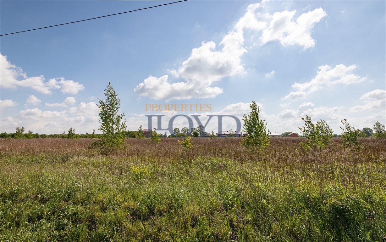 Działka rolna na sprzedaż Wola Wągrodzka, Ogrodowa  1000m2 Foto 7