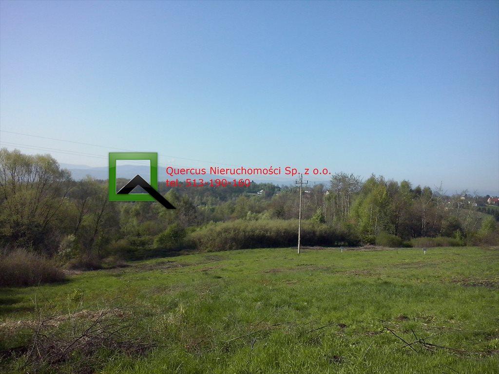 Działka budowlana na sprzedaż Raciborsko  1300m2 Foto 1