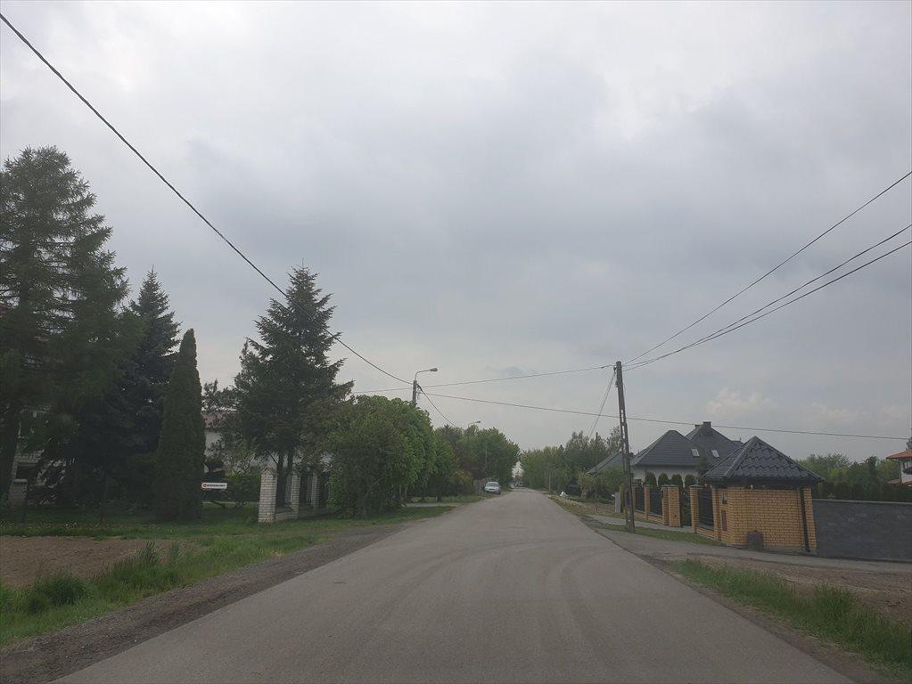Działka rolna na sprzedaż Topolin  3000m2 Foto 2