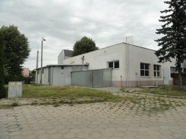 Lokal użytkowy na sprzedaż Elbląg, Rybna  579m2 Foto 6