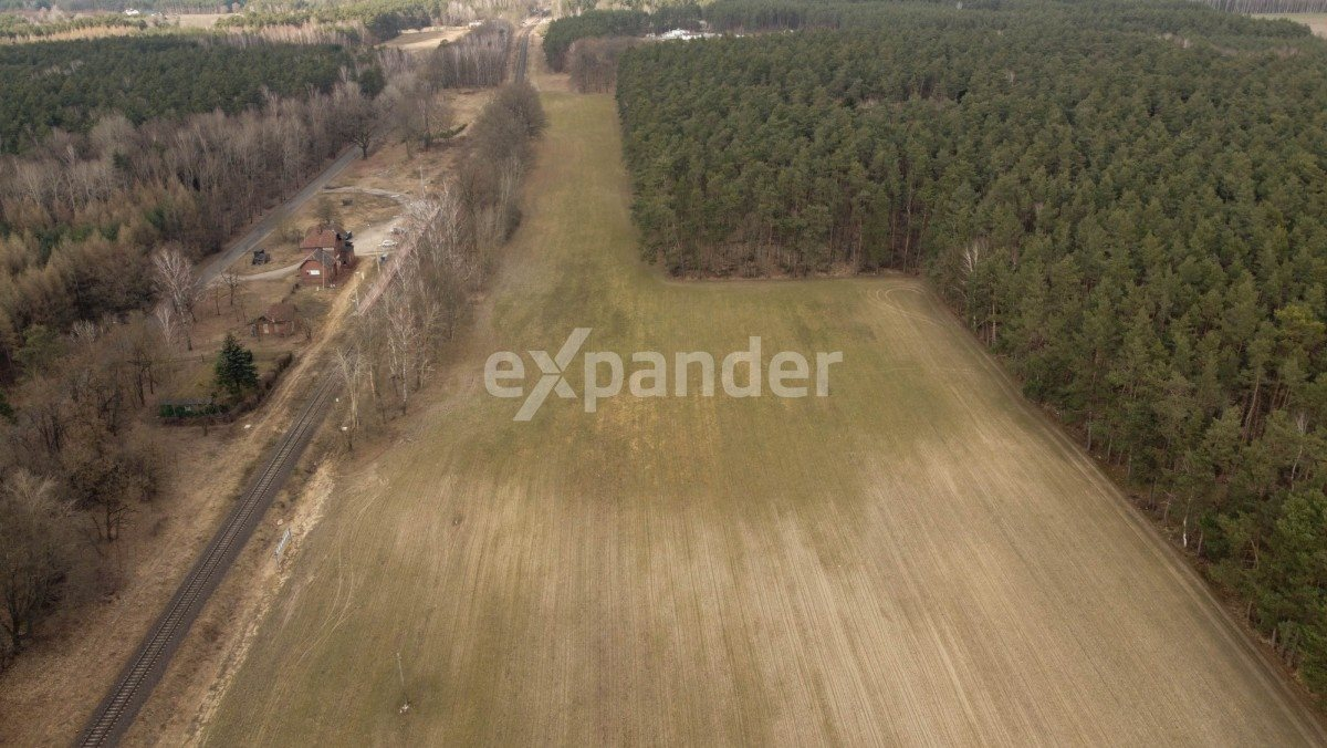Działka rolna na sprzedaż Roszkowo  52900m2 Foto 3