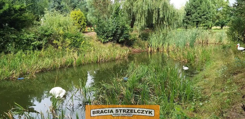 Działka siedliskowa na sprzedaż Nowe Gniewniewice  5700m2 Foto 3