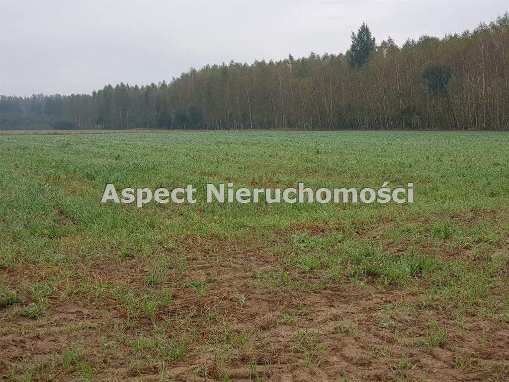 Działka rolna na sprzedaż TUROŚŃ KOŚCIELNA, CZACZKI  9300m2 Foto 1