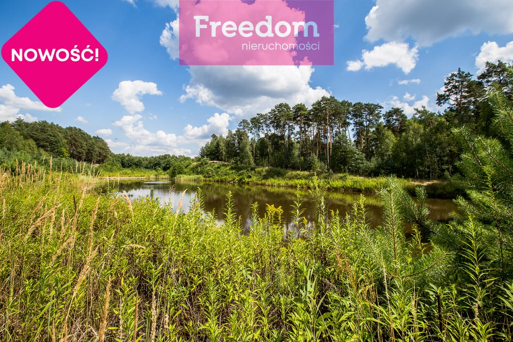 Działka leśna na sprzedaż Zielonka  38097m2 Foto 5
