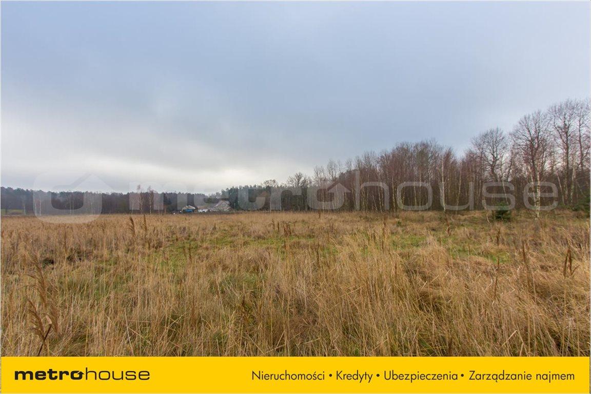 Działka rolna na sprzedaż Jelonek, Borne Sulinowo  30900m2 Foto 8