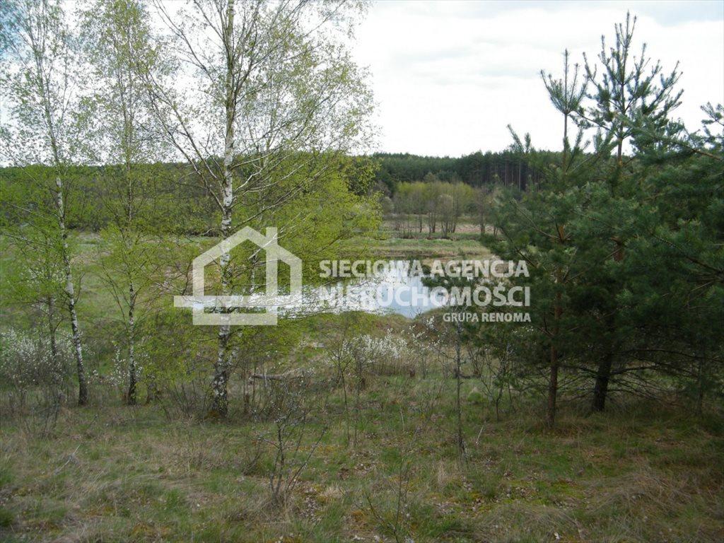 Działka leśna na sprzedaż Huta Kalna  20250m2 Foto 1