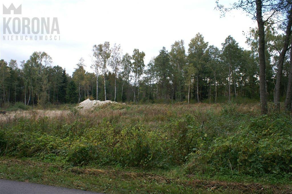 Działka budowlana na sprzedaż Hołówki Duże  3836m2 Foto 3