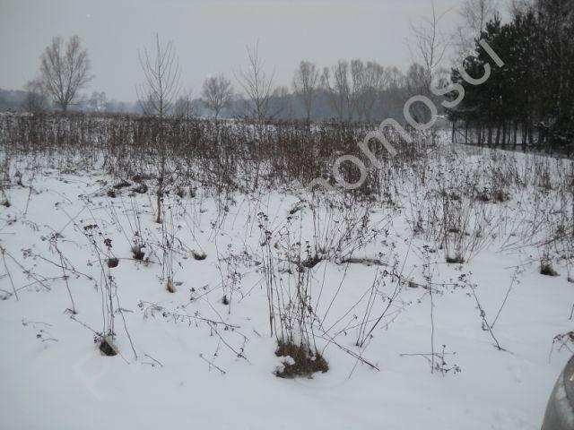 Działka rolna na sprzedaż Stare Budy  6000m2 Foto 1