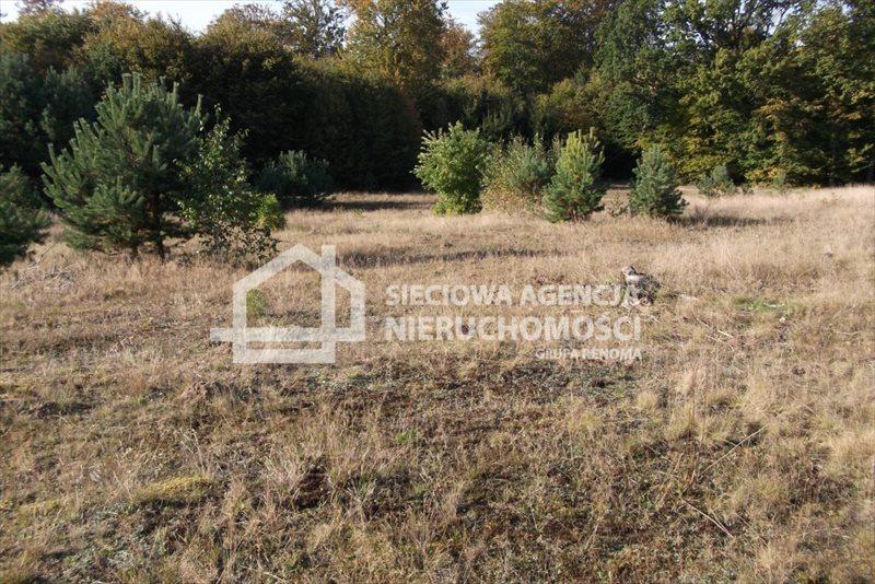 Działka rolna na sprzedaż Sepiot  43700m2 Foto 1