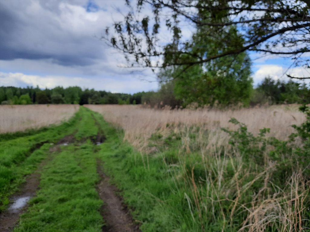 Działka rolna na sprzedaż Stare Babice, Wojcieszyn  1400m2 Foto 7