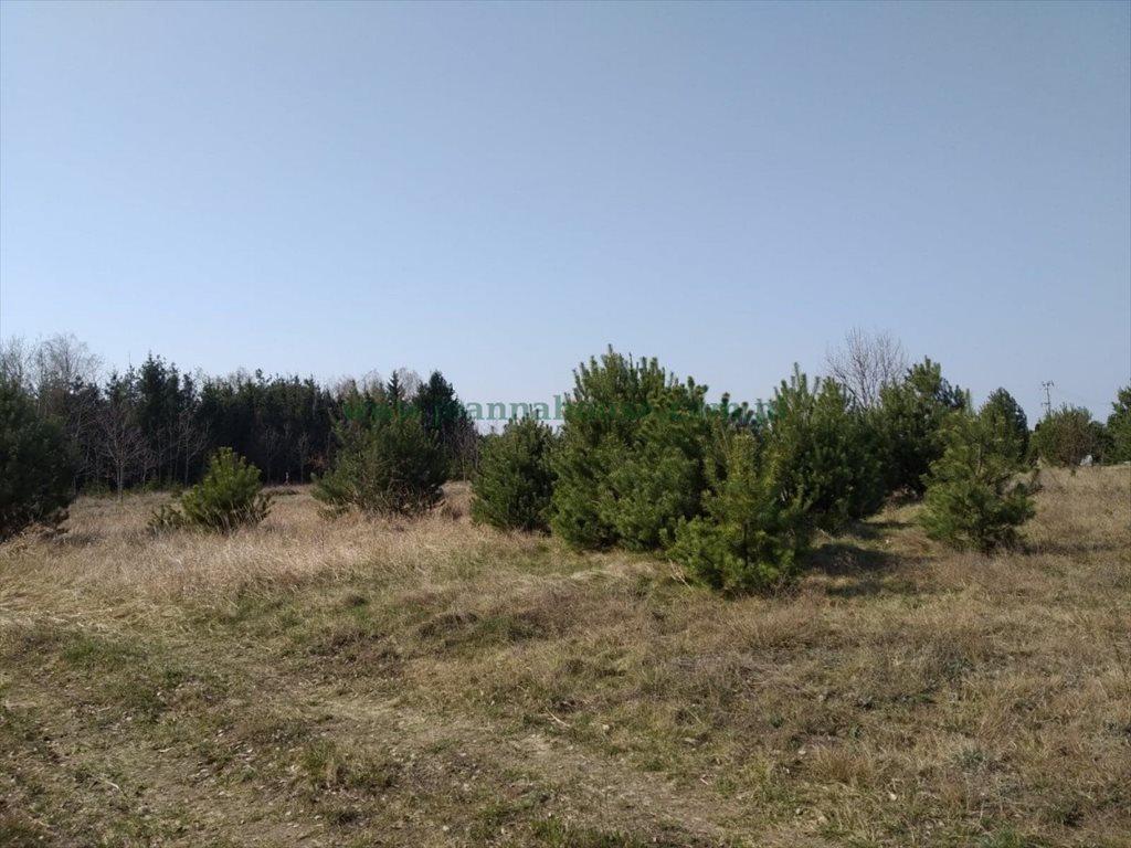 Działka rolna na sprzedaż Nowe Grochale  1246m2 Foto 8