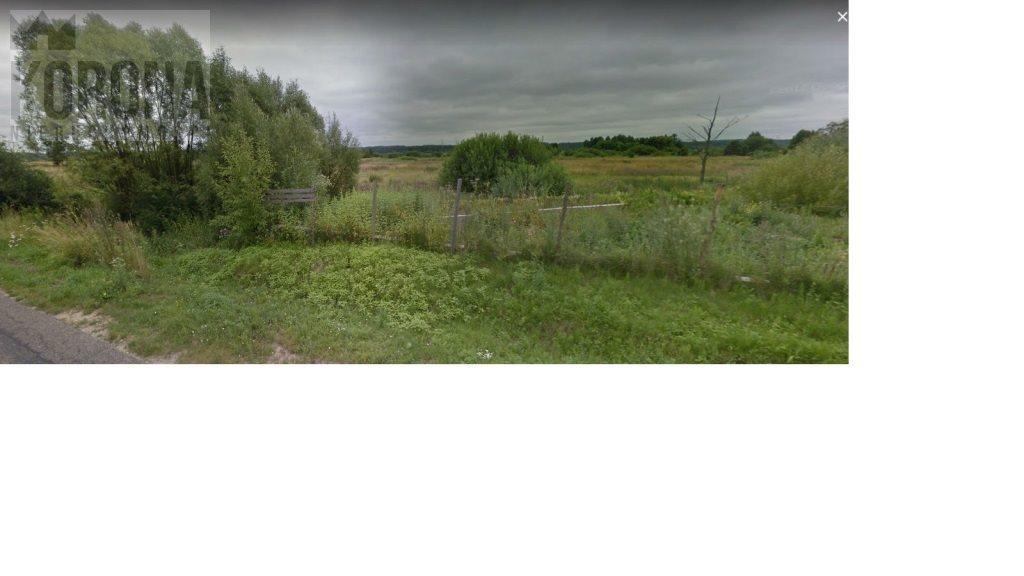 Działka rolna na sprzedaż Wasilków, Wasilków, Gajna  10000m2 Foto 3