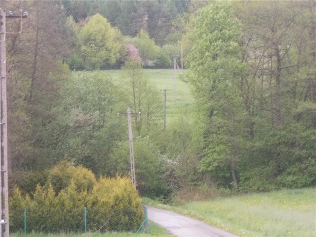Działka rolna na sprzedaż Sułów, Biskupice  15000m2 Foto 5