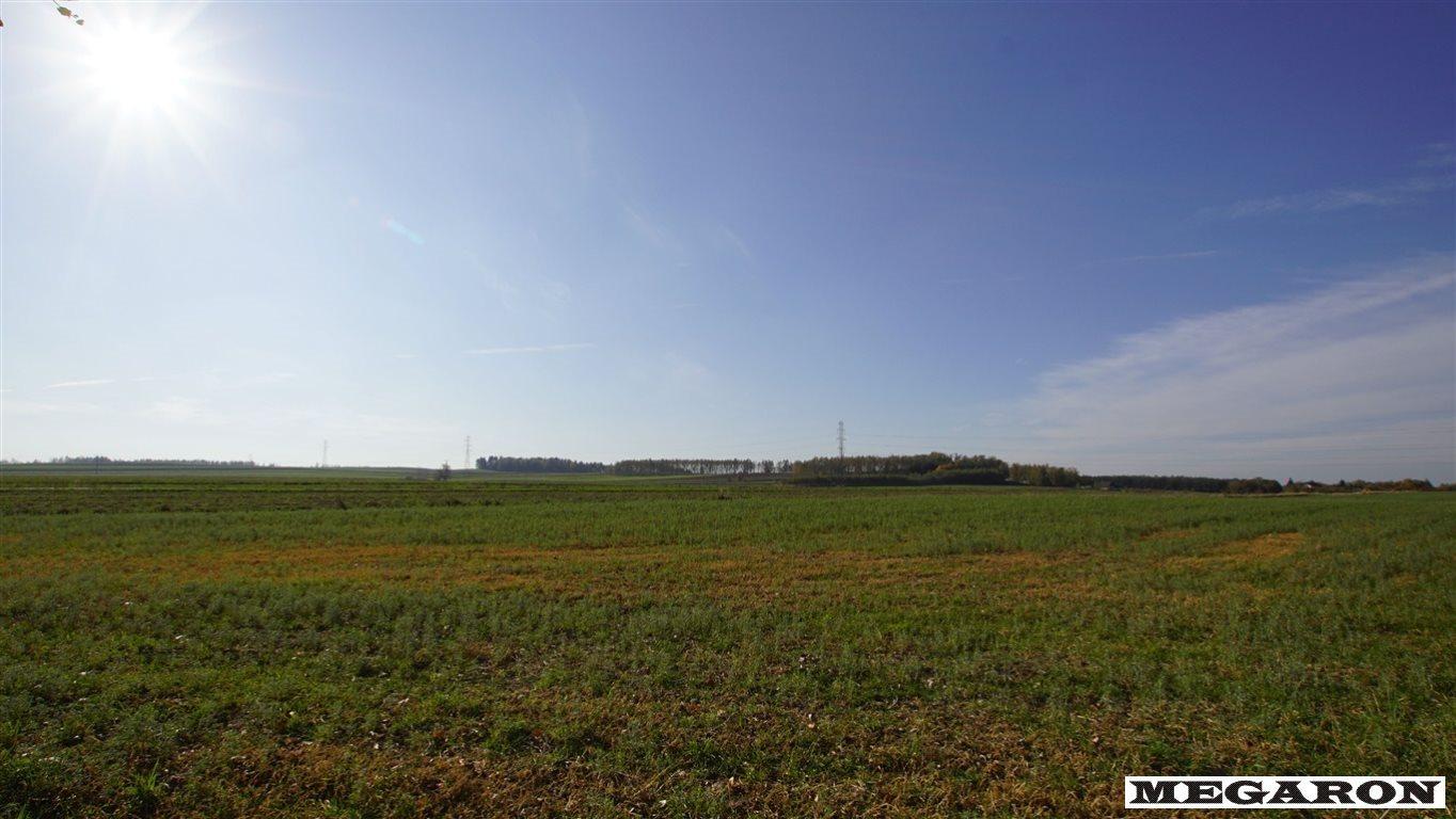 Działka przemysłowo-handlowa na sprzedaż Jaworzno, Jaworzno Bankowe  29229m2 Foto 4