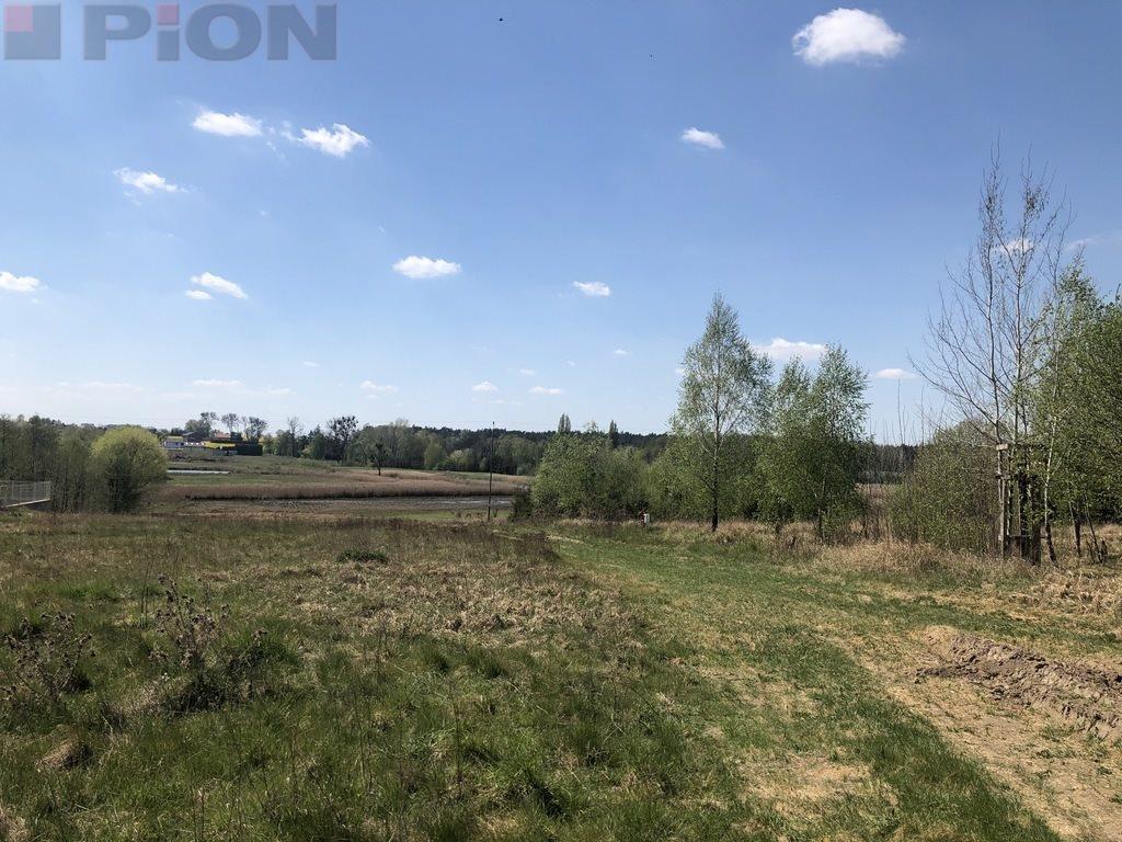 Działka budowlana na sprzedaż Rogierówko  8961m2 Foto 1