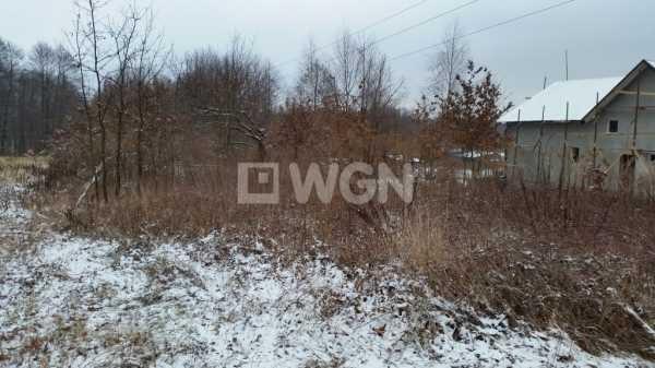Działka budowlana na sprzedaż Kwaczała, Czarny las, Czarny las  4000m2 Foto 3