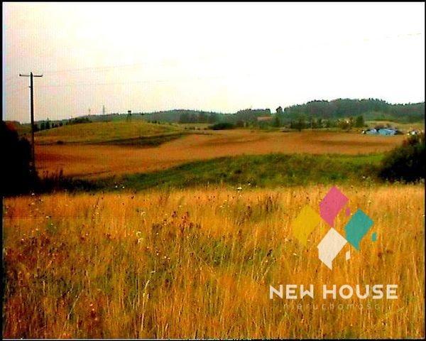 Działka rolna na sprzedaż Szałstry  6200m2 Foto 6