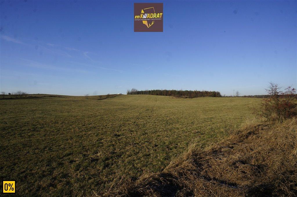 Działka leśna na sprzedaż Drygały  42100m2 Foto 4
