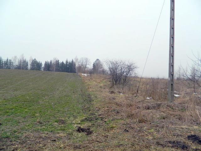 Działka rolna na sprzedaż Wyszowate, Wyszowate  3000m2 Foto 12