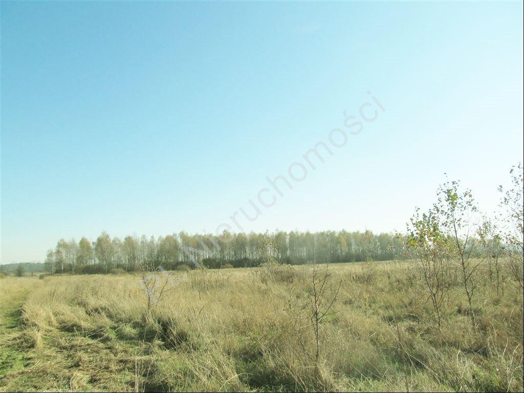 Działka rolna na sprzedaż Tyborów  30000m2 Foto 4