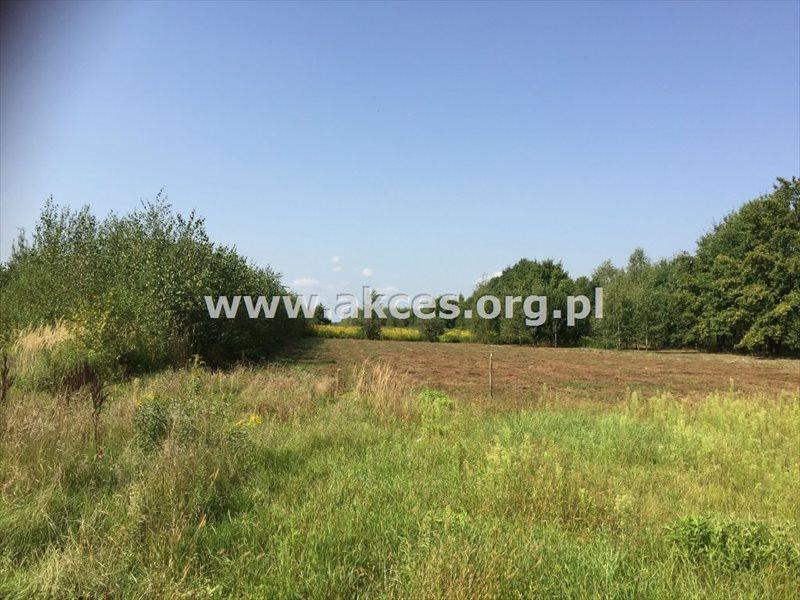 Działka rolna na sprzedaż Zawodne  1200m2 Foto 1
